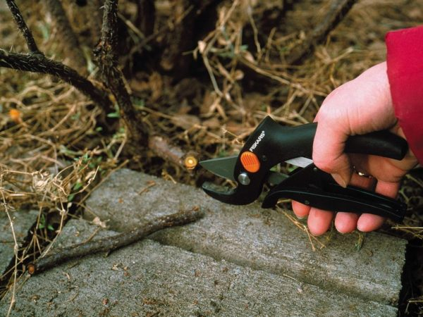 Fiskars snoeischaar power-Lever aambeeld